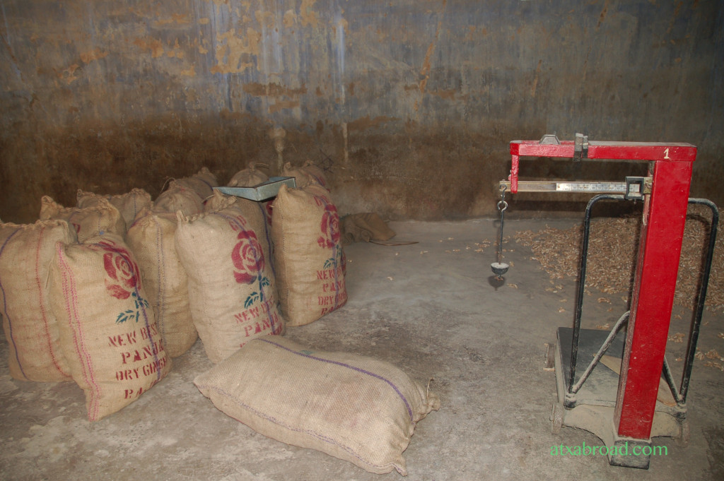 Weighed Sacks of Ginger